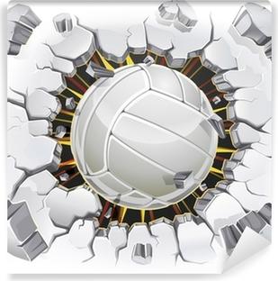 Vinyl Fotobehang Volleybal en oude gips muur schade. Vector illustratie