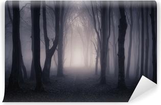 Vinyl Fotobehang Weg door een donker bos bij nacht