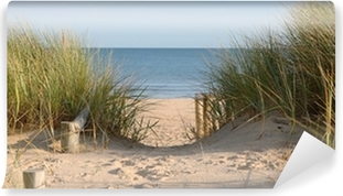 Vinyl Fotobehang Weg van het strand door de Duinen