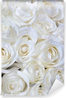 Vinyl Fotobehang Witte rozen achtergrond