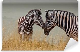 Vinyl Fotobehang Zebras - moeder en zoon
