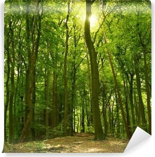 Vinyl Fotobehang Zonnige zomer bos
