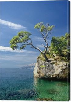 Berømt smuk sten med fyrretræer i Brela i Kroatien Fotolærred