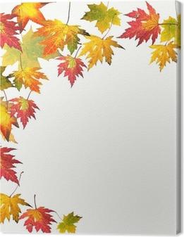 Farben des Herbstes: Bunte Ahorn-Blätter Fotolærred
