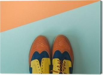 Flad lay mode sæt: farvede vintage sko på farvet baggrund. Ovenfra. Fotolærred