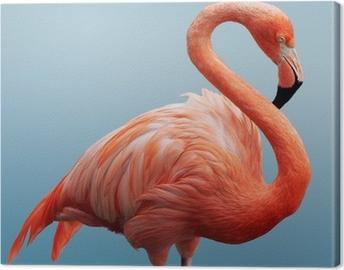 Flamingo Fotolærred