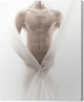 Foran en delvis nøgen mandlig krop Fotolærred