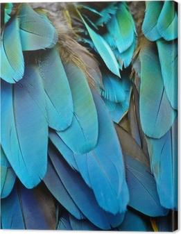 Harlequin Macaw fjer Fotolærred