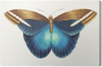 Illustration af dyr kunstværk Fotolærred