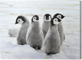 Kejser pingvin Fotolærred