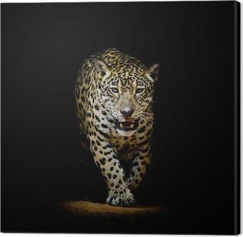 Leopard portræt Fotolærred