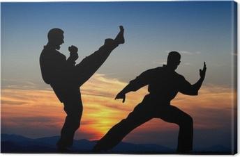 Martial arts Fotolærred