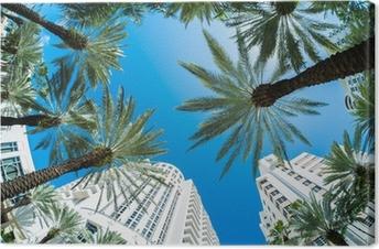 Miami Beach Fotolærred