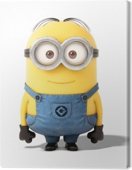 Minion Fotolærred
