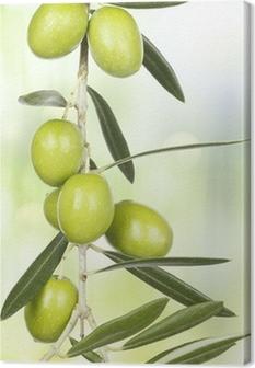 Oliven gren Fotolærred
