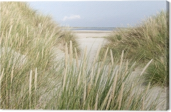 Sandy klitter i Holland Fotolærred