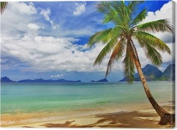 Smukke afslappende tropiske landskaber Fotolærred