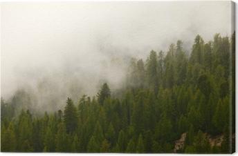 Tåget Skov Fotolærred
