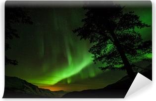 Fotomural Estándar Aurora Borealis (aurora boreal) en Suecia