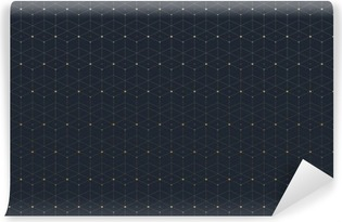 Fotomural Autoadhesivo Patrón transparente geométrica con la línea conectada y puntos. conectividad gráfico de fondo. telón de fondo poligonal con estilo moderno para su diseño. Ilustración del vector.