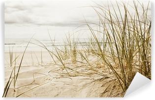 Fotomural Autoadhesivo Primer plano de una hierba alta en una playa durante la temporada nublado