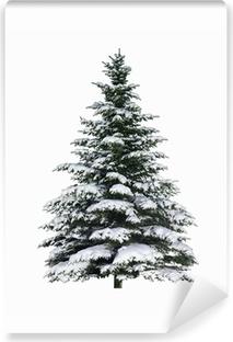 Fotomural Autoadhesivo Spruce en la nieve