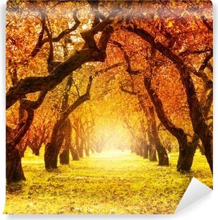 Fotomural Estándar Autumn. Caída. Parque Otoñal