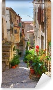 Fotomural Estándar Callejón. Scalea. Calabria. Italia.