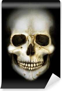 Fotomural Estándar Cráneo en la oscuridad de color