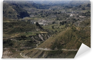 Fotomural Estándar Der Cañón del Colca en Perú