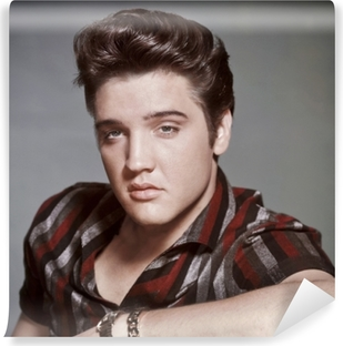 Fotomural Estándar Elvis Presley