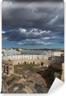 Fotomural Estándar Excavación Coliseo romano en Cartagena, España