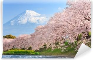 Fotomural Estándar Flores de cerezo o sakura y fuji de montaña en el fondo