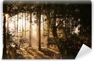 Fotomural Estándar Forêt elfique