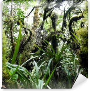 Fotomural Estándar Foret tropicale humide