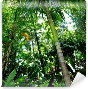 Fotomural Estándar Forêt tropicale
