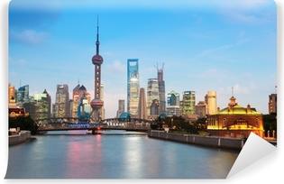 Fotomural Estándar Hermosa noche en Shangai