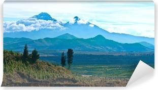 Fotomural Estándar Ilinizas, Andes. Ecuador. Ilinizas Nature Reserve. Los Ilinizas