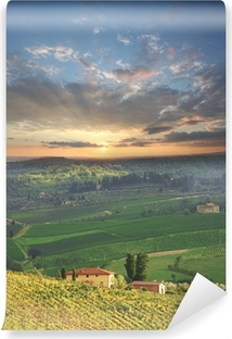 Fotomural Lavable Chianti, famoso viñedo en Italia