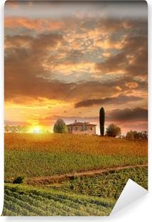 Fotomural Lavable Chianti viñedo paisaje en Toscana, Italia