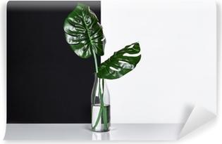 Fotomural Lavable Composición. Hojas verdes en botella sobre fondo blanco y negro. Vista frontal, copia espacio.