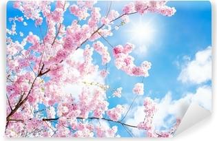 Fotomural Lavable Kirschbaumblüte