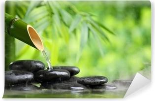 Fotomural Lavable Manantial de agua mineral