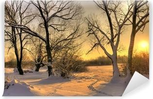 Fotomural Lavable Puesta del sol hermosa del invierno con los árboles en la nieve
