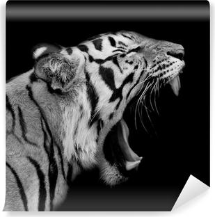 Fotomural Lavable Tigre de Sumatra Roaring