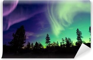 Fotomural Estándar Northern Lights (Aurora Borealis)