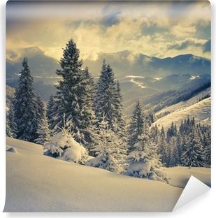 Fotomurales Paisajes de invierno • Pixers® - Vivimos para . 2dc9fb2fa8f