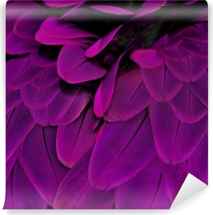 Fotomural Estándar Plumas; Púrpura