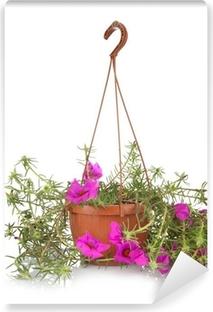 Fotomural Estándar Portulaca grandiflora