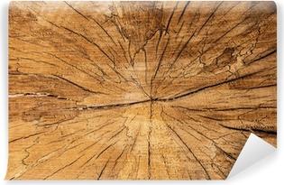 Fotomural Estándar Textura de madera.